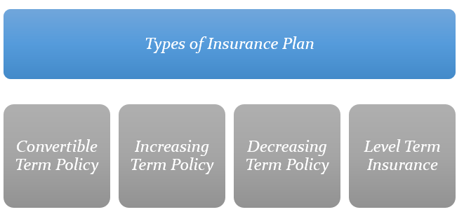 the types of Term Insurance Plans available in UAE